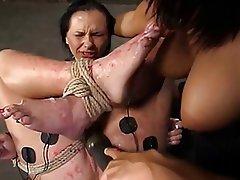 BDSM, Masturbation, Pornstar